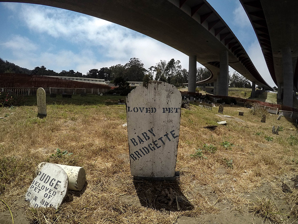 Tombstones within San Francisco's Pet Cemetery.