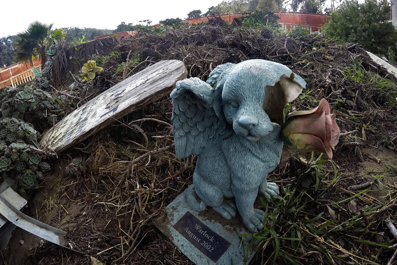 San Francisco S Creepy Hidden Pet Cemetery In The Presidio