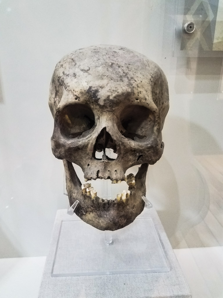 Skull on display inside Mexico City's Palace of Inquisition.
