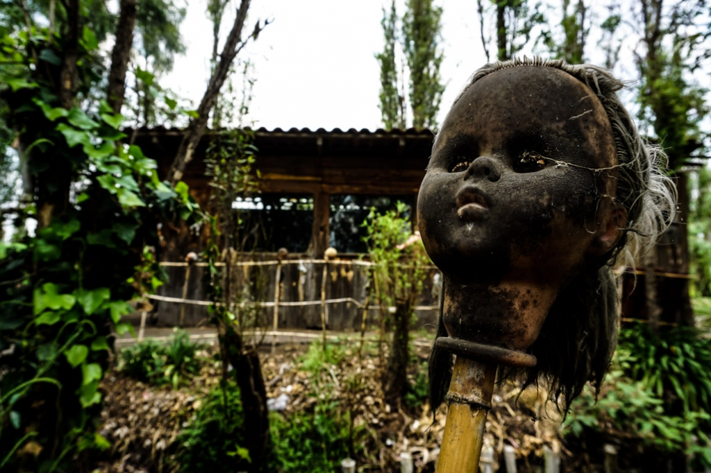 Decapitated haunted doll head on Island Of the Dolls.