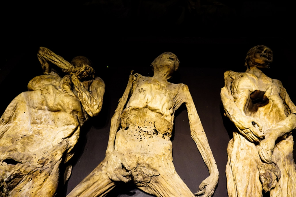 Mummies who suffered horrible deaths on display at the Museo de las Momias in Guanajuato.