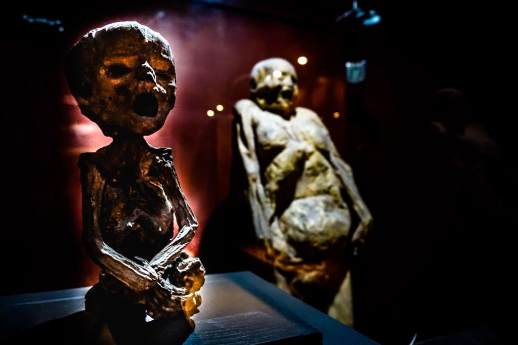 Smallest mummy in the world at Museo de las Momias Guanajuato.