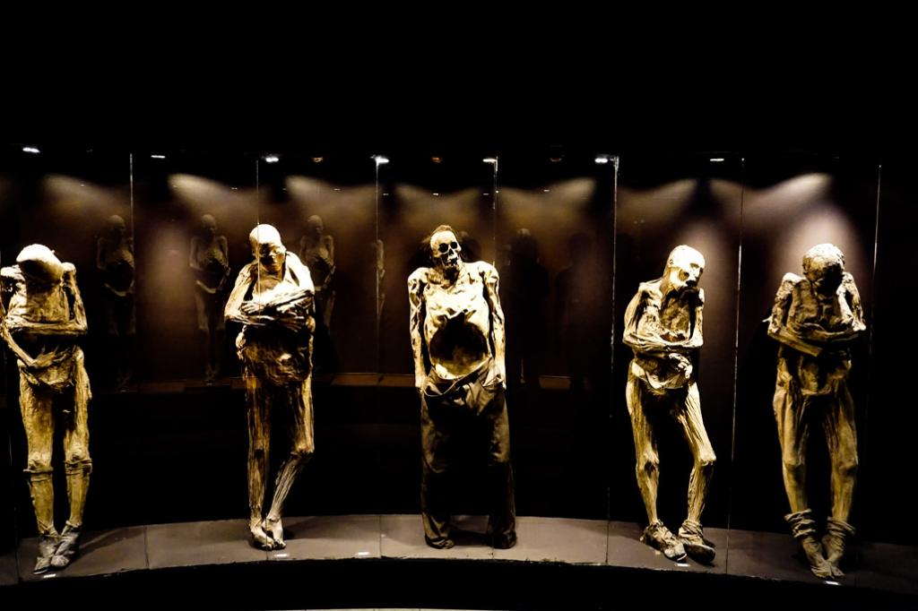 Mummies collection in Guanajuato