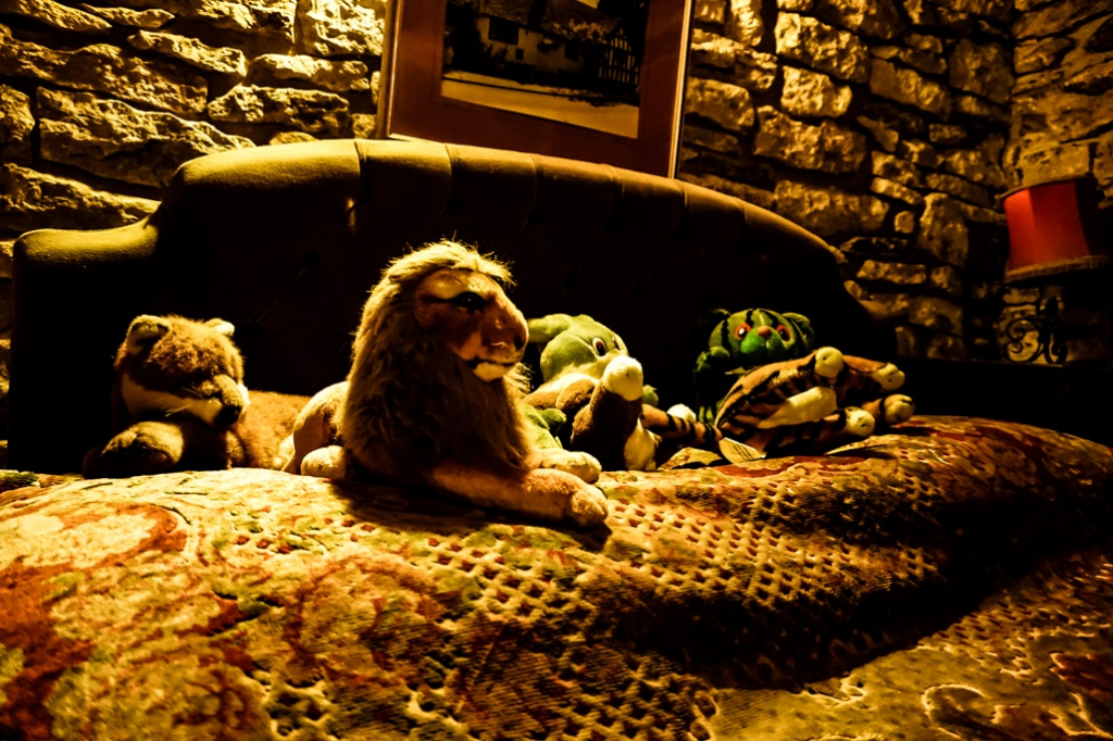 Toys inside the Ancient Ram Inn's Witches Room.