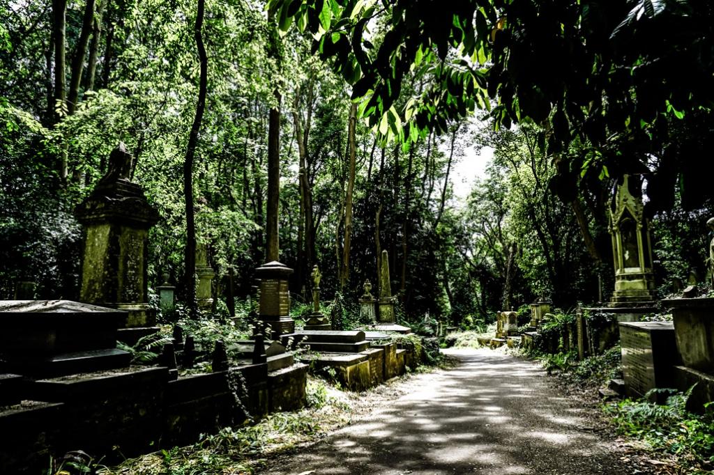 Graves in Highgate Cemetery.