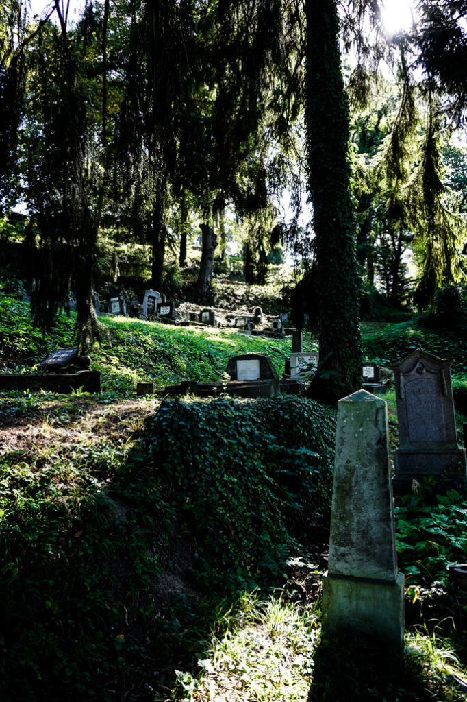 The spooky overgrown cemetery of Sighisoara.