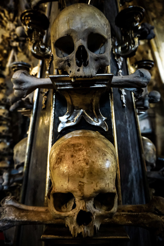 Human skulls on display in the Sedlec Ossuary.