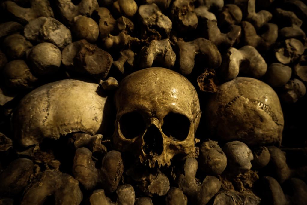 Human skulls in the Catacombs of Paris.