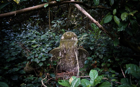 Singapore's Most Haunted Cemetery: Bukit Brown's 100 Thousand Ghosts