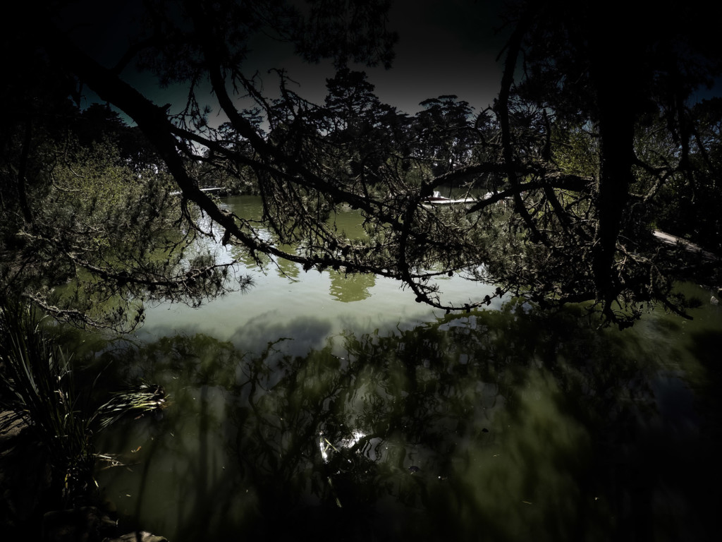 Haunted Stow Lake in San Francisco.