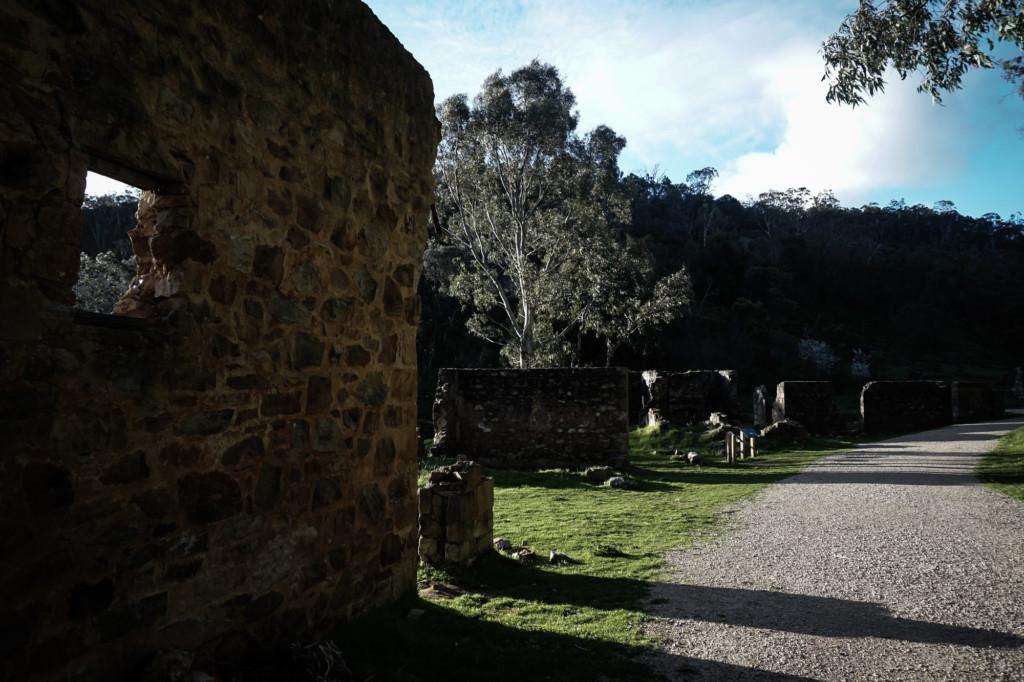 Newman's Nursery ruins on Anstey Hill.