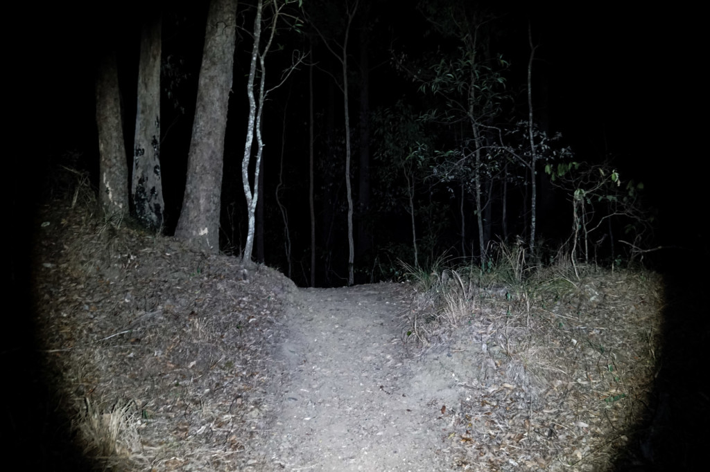 Haunted hiking trail in Brisbane, Australia.