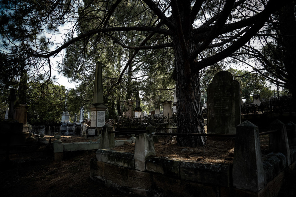 Graves under a tree in haunted Toowong Cemetery.
