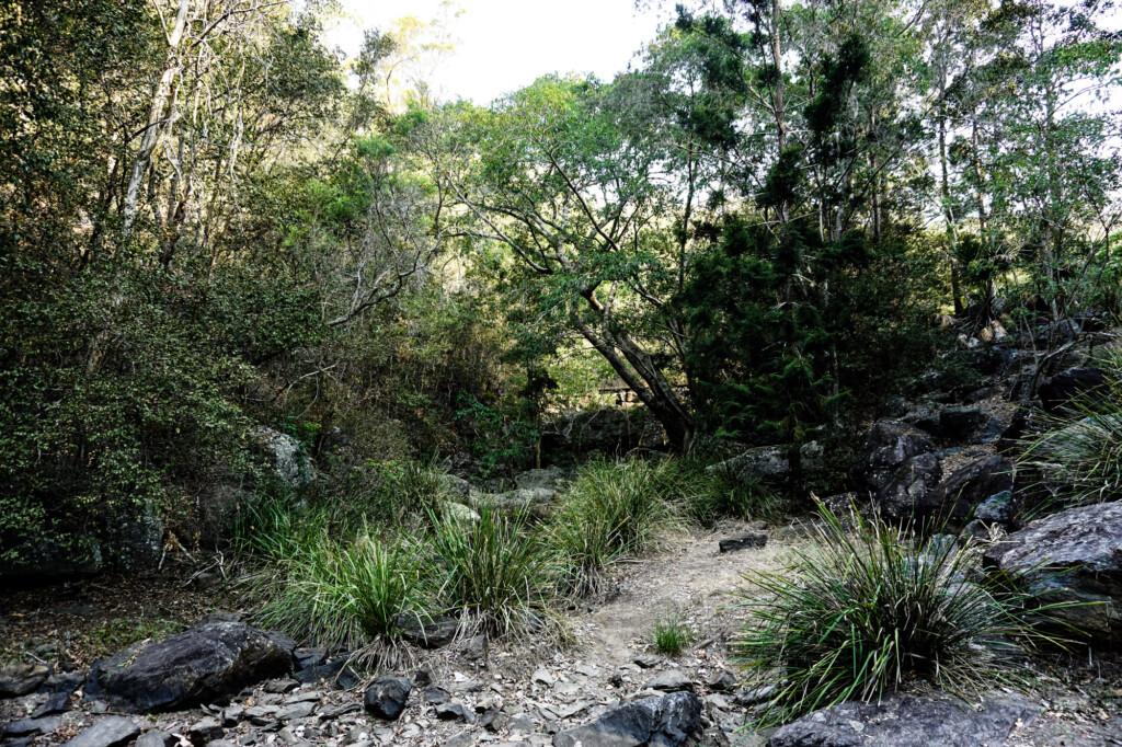 Creek at Slaughter Falls, Queensland, Australia.