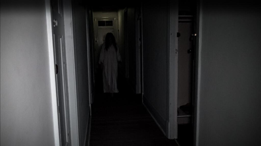 Ghost lady haunts pub.