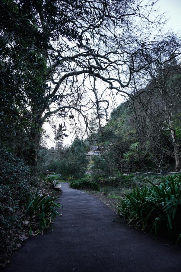 Haunted walking trail South Australia.