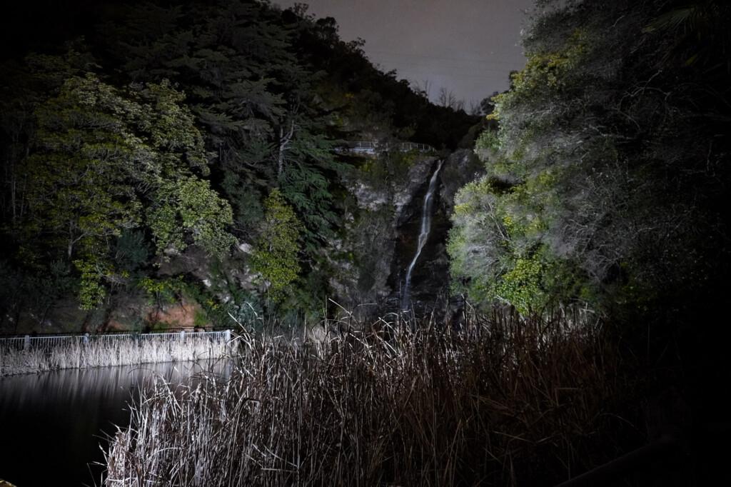 Waterfall Gully haunted.